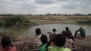 50 years of solidarity